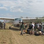 How Much Does A Safari Cost?