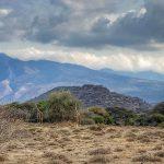 Masailand Safari